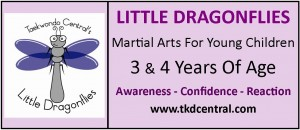 Little Dragonflies Sign - Logo