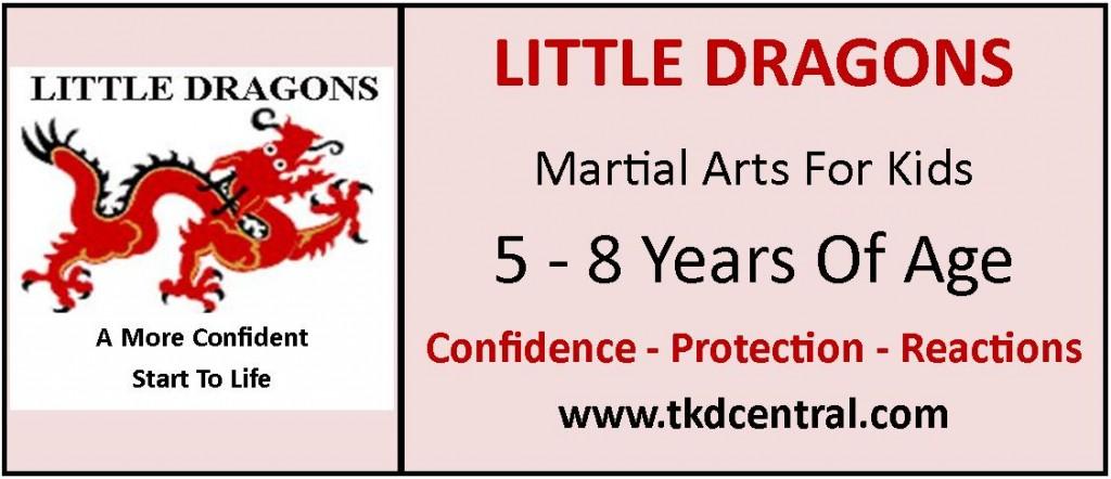 Little Dragons Sign - Logo