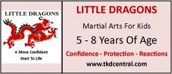 Little Dragons Sign - Logo
