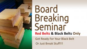 Board Breaking Seminar Logo