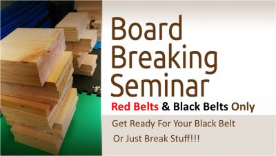 Board Breaking Seminar Logo