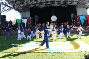 Taekwondo Central Demo Team Warm Up