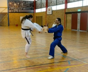 Rebecca Collis Launches A Push front Kick At The Board which smashes with ease - www.tkdcentral.com